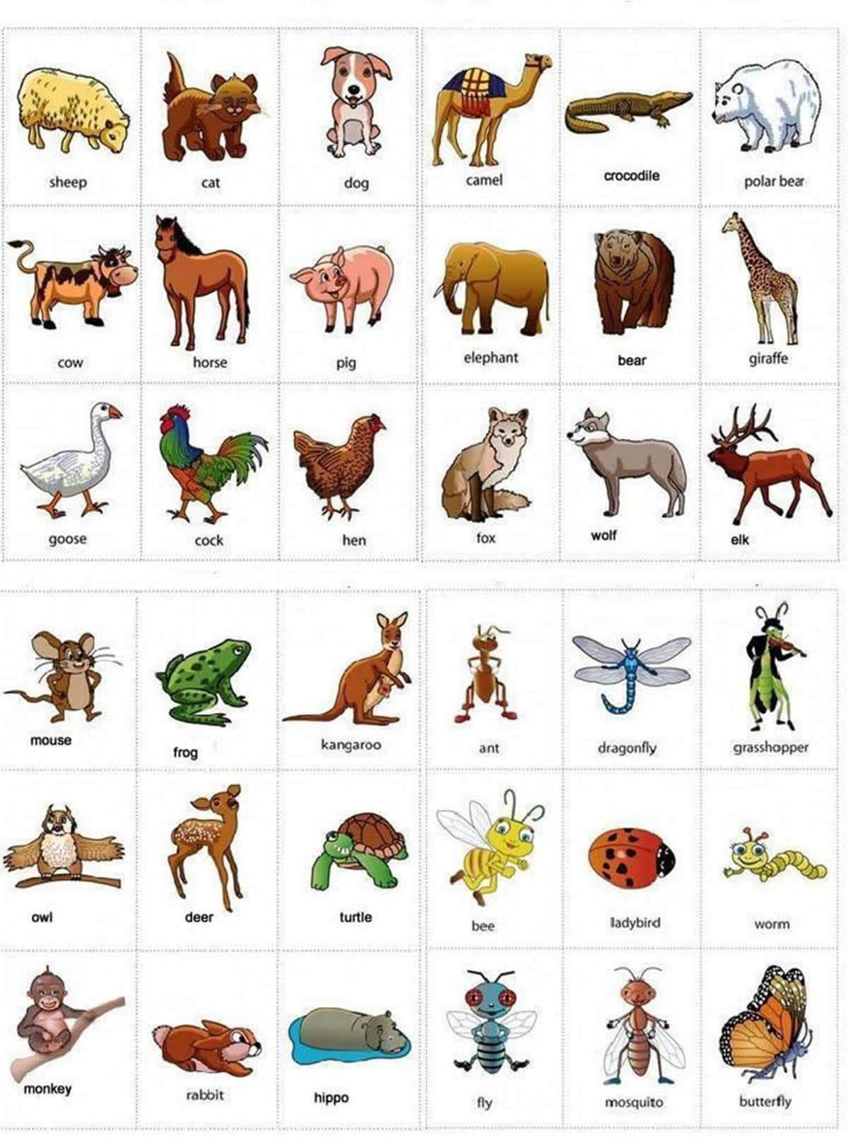 Learn English Vocabulary through Pictures: 100+ Animal Names - ESLBuzz  Learning English