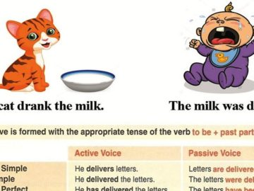 How to Use the Passive Voice with Different Tenses 14