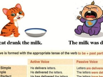 How to Use the Passive Voice with Different Tenses 16