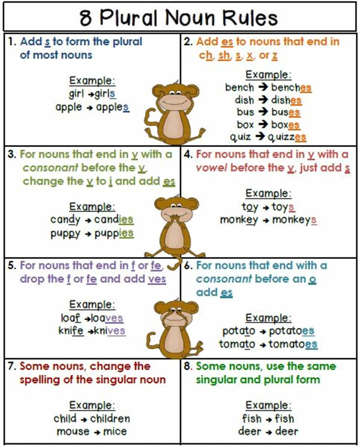 Singular and Plural Nouns: Definitions, Rules & Examples 14
