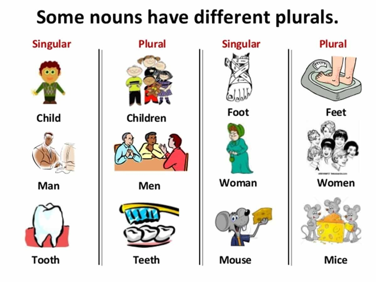 some nouns have different plurals