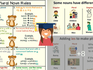 Singular and Plural Nouns: Definitions, Rules & Examples 15