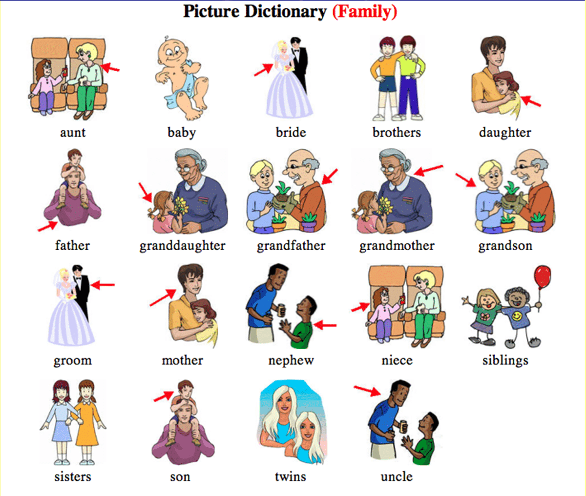 English Vocabulary: Members of the Family 2