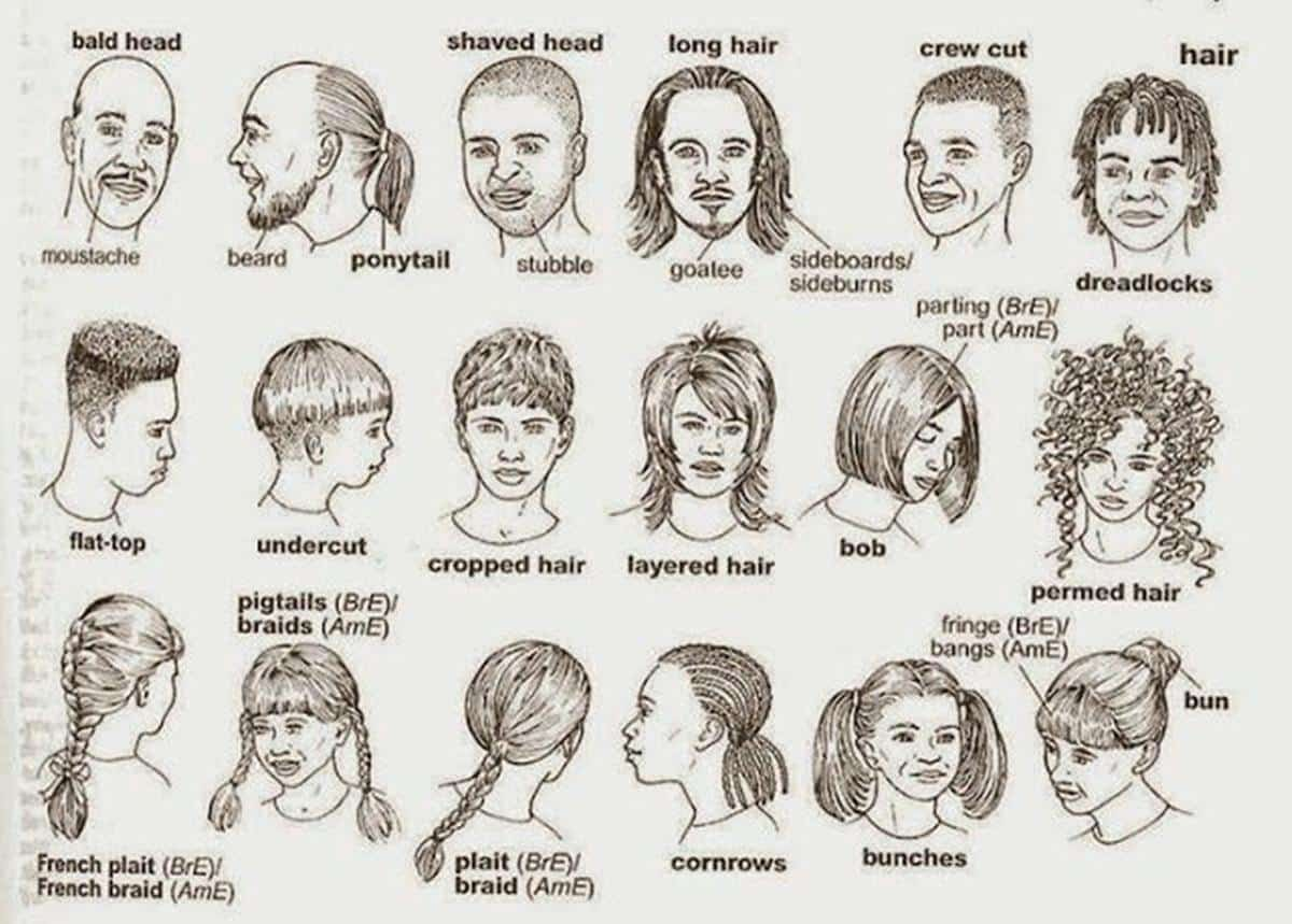 English Vocabulary: Hairstyles - ESLBuzz Learning English