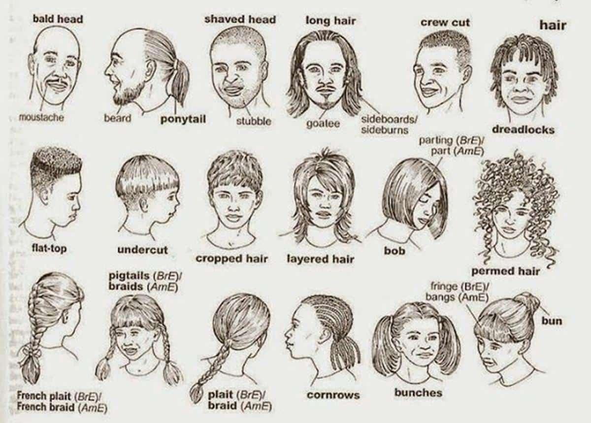 English Vocabulary: Hairstyles