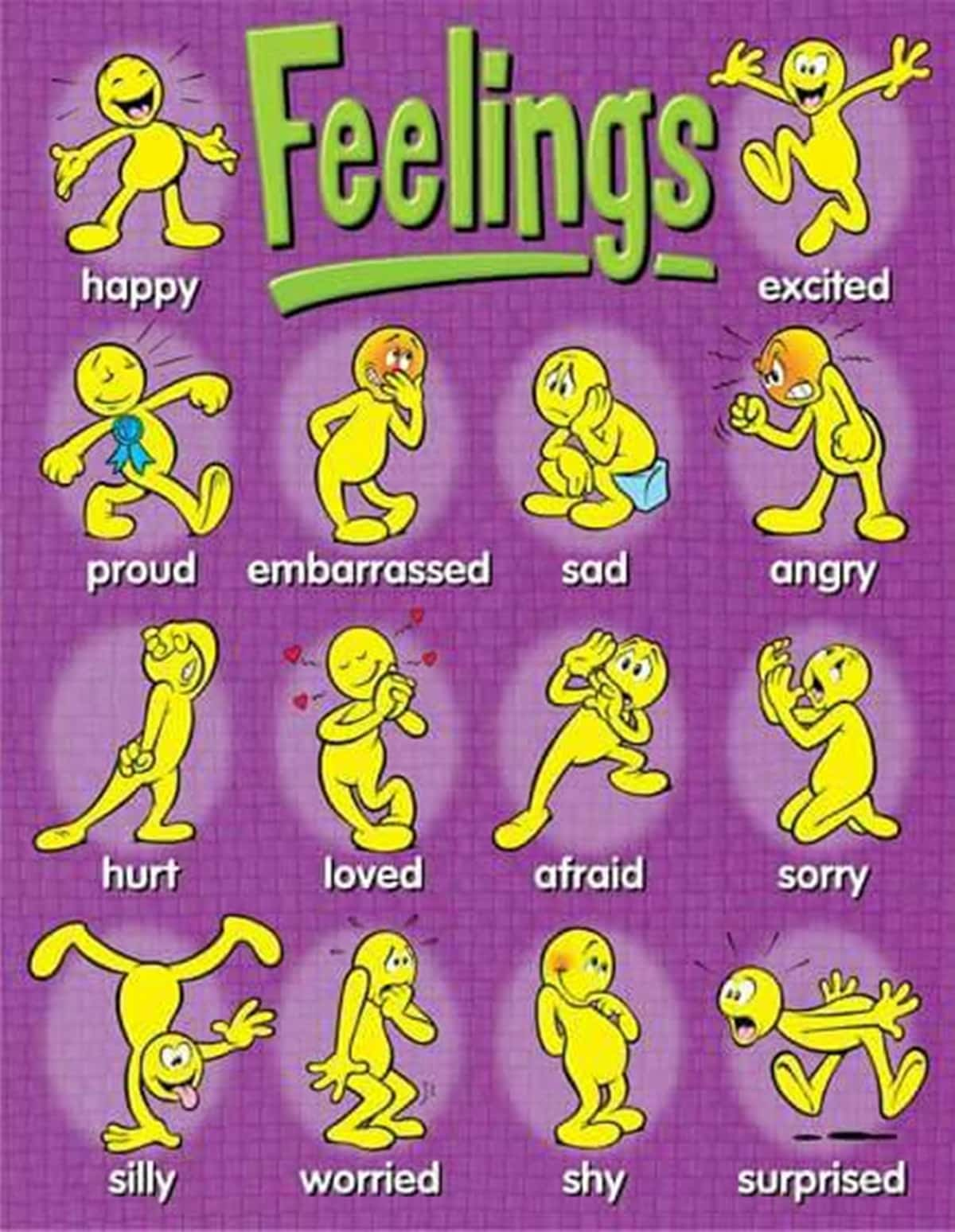 Describing Someone's Feelings and Emotions