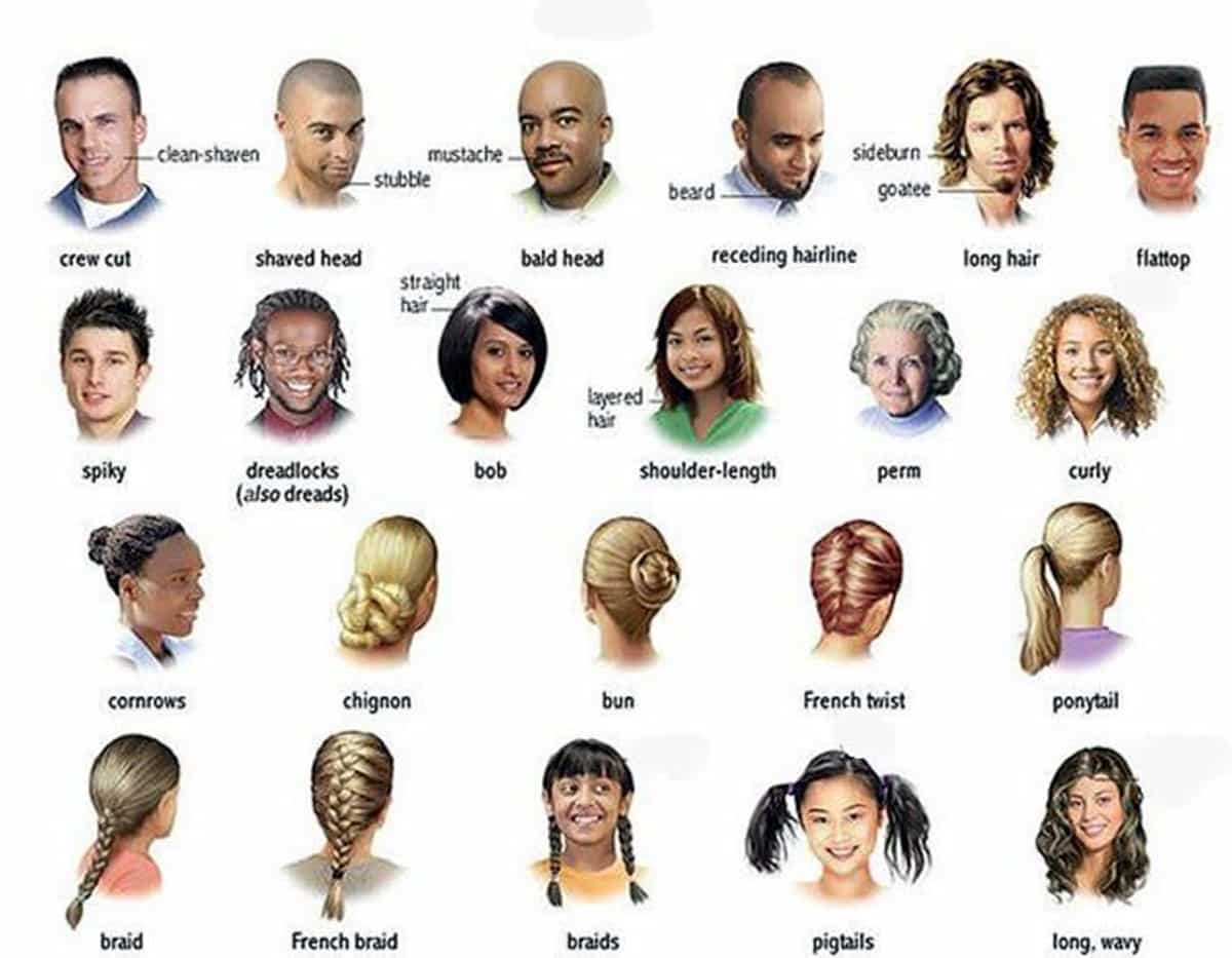 English Vocabulary:  Hairstyles 14