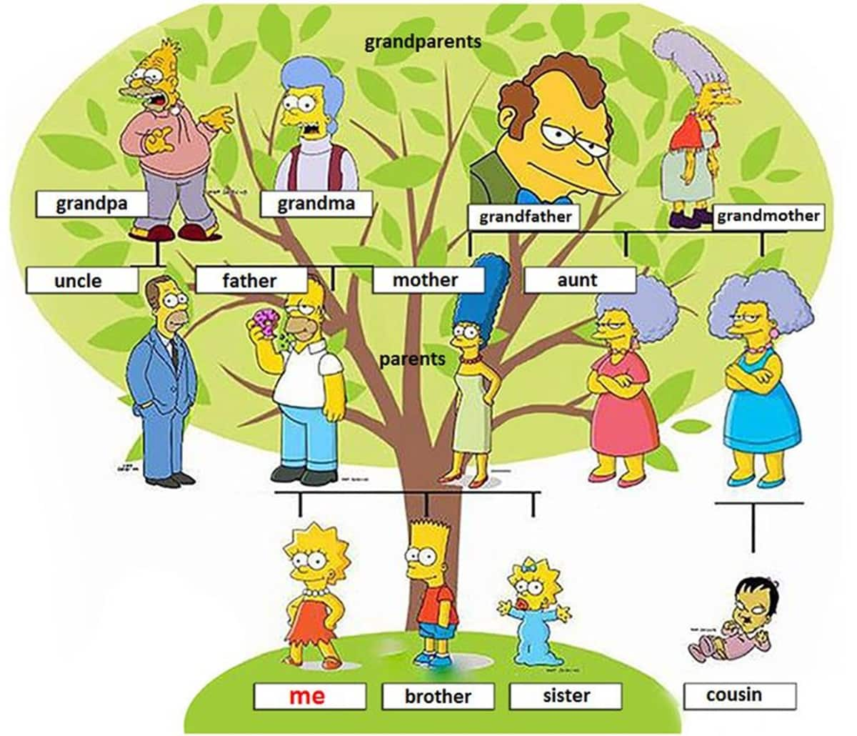 English Vocabulary: Members of the Family