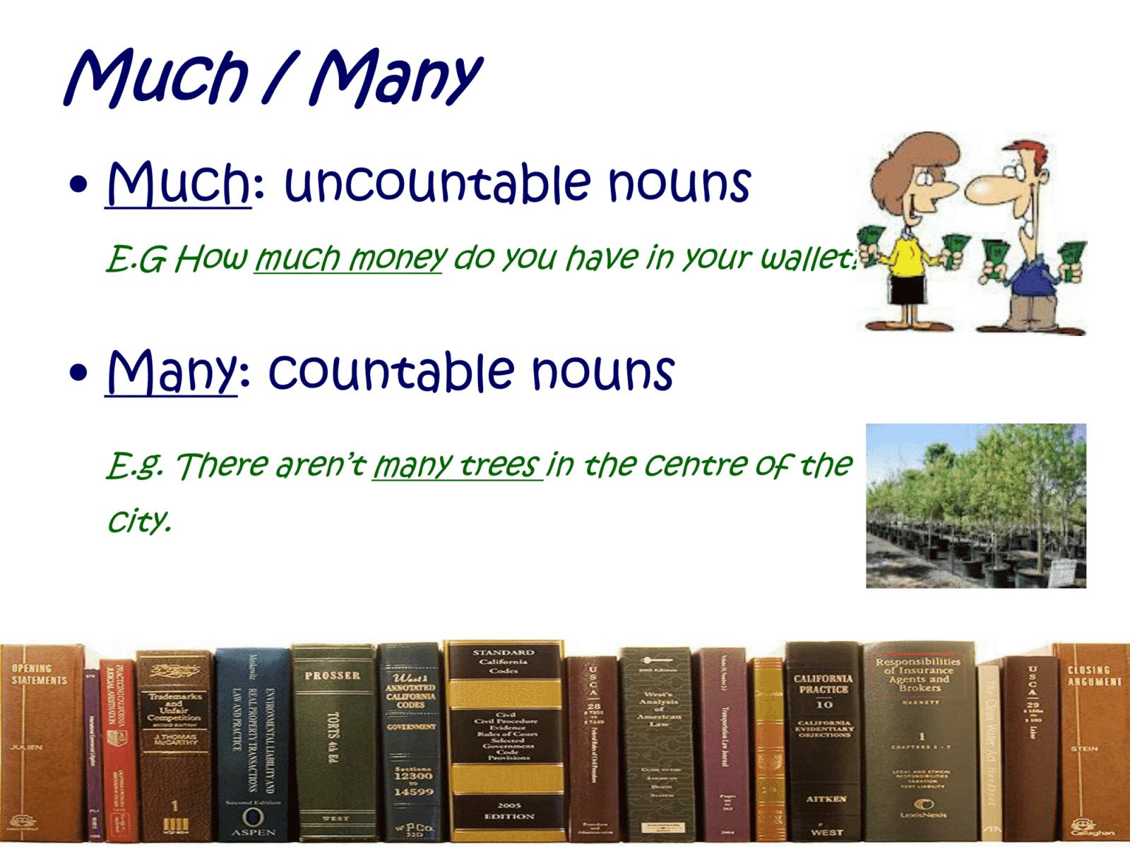 much/ many
