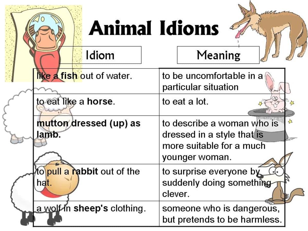 30+ Amazing Animal Idioms in English 15