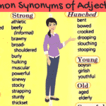 Prepositions and Adjectives Combination You Should Know 2