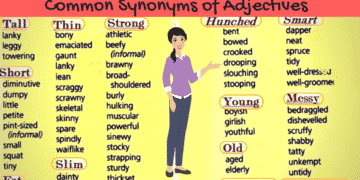 Synonyms for the Most Commonly Used Adjectives in English (With Examples) 1