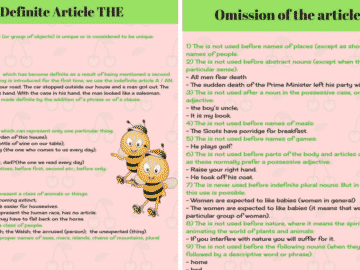 The Definite Article THE in English   Grammar Rules 14