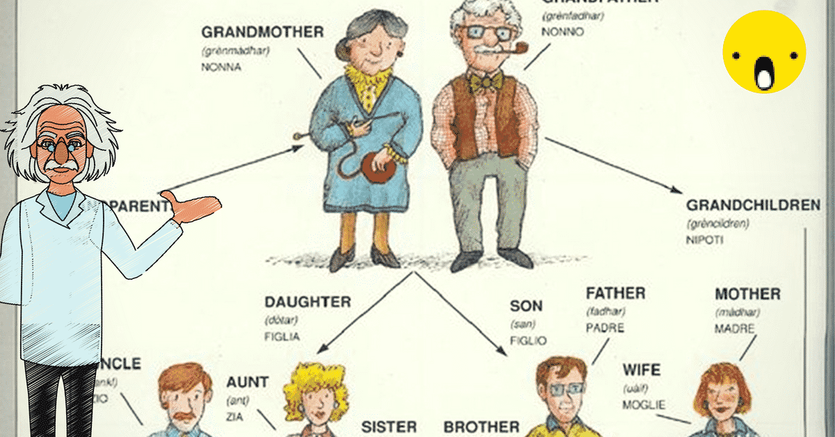 English Vocabulary: Members of the Family 12