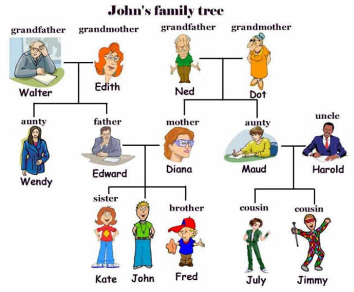 English Vocabulary: Members of the Family 16