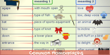 Common Homographs in English (With Examples) 14