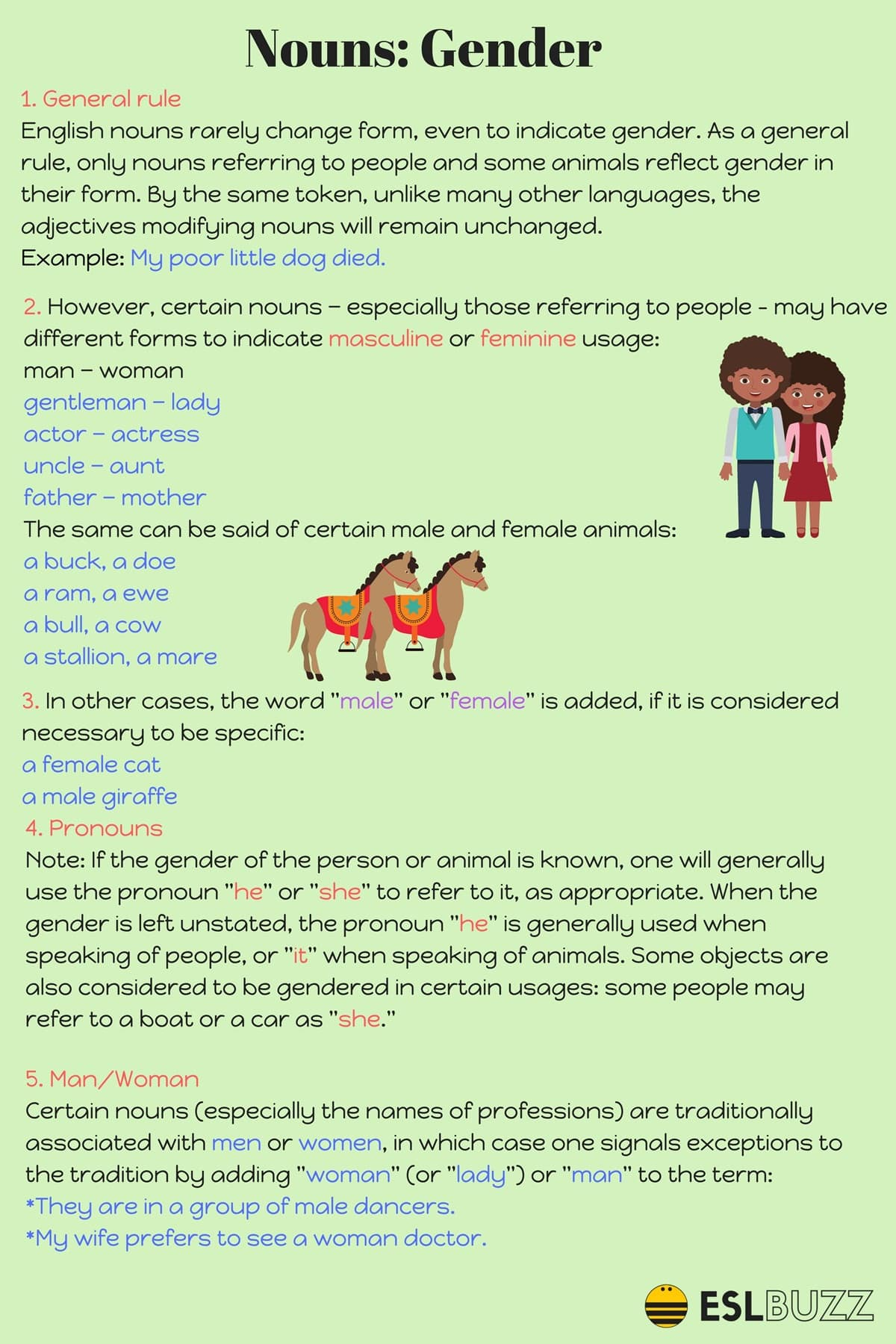 Gender of Nouns in English