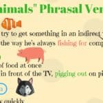 How to Use Preposition of Place AT/ IN/ ON 3