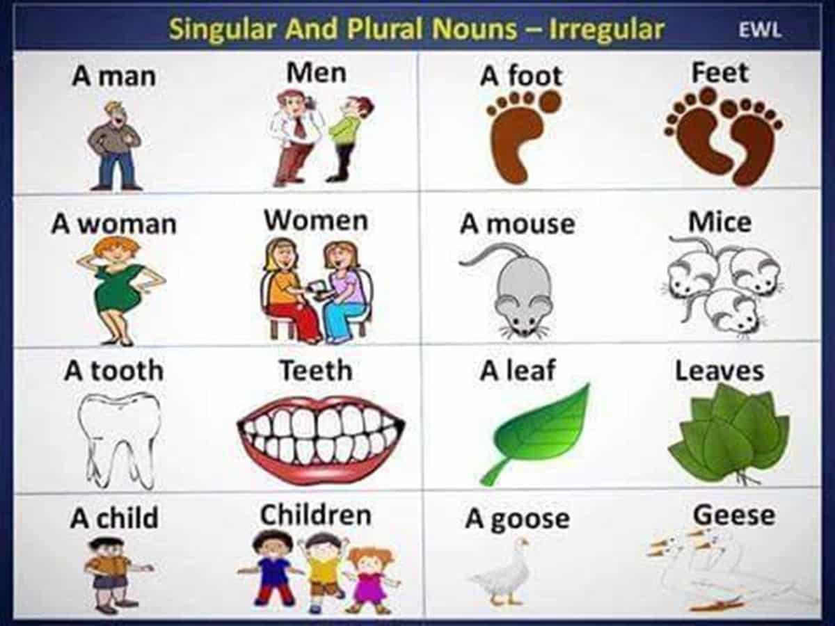 Common Irregular Plural Nouns