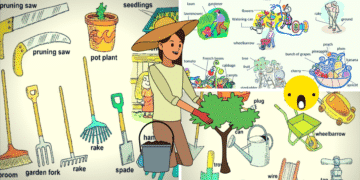 In the Garden Vocabulary 1