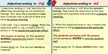 Adjectives Ending in -ED and -ING 3