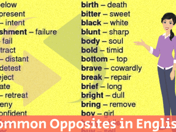 Common Opposites in English You Should Know 15