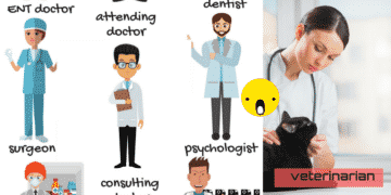 Different Types of Doctors Vocabulary in English 1