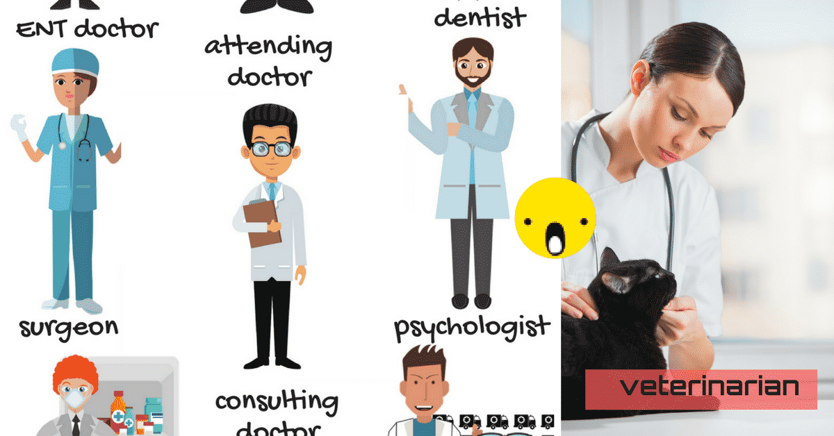 Different Types of Doctors Vocabulary in English 6
