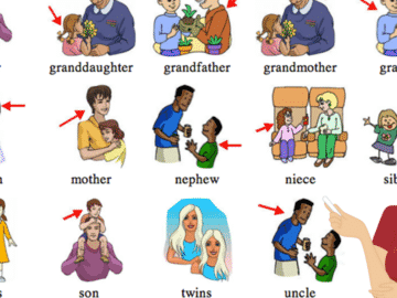 English Vocabulary: Family Members and Different Types of Family 18