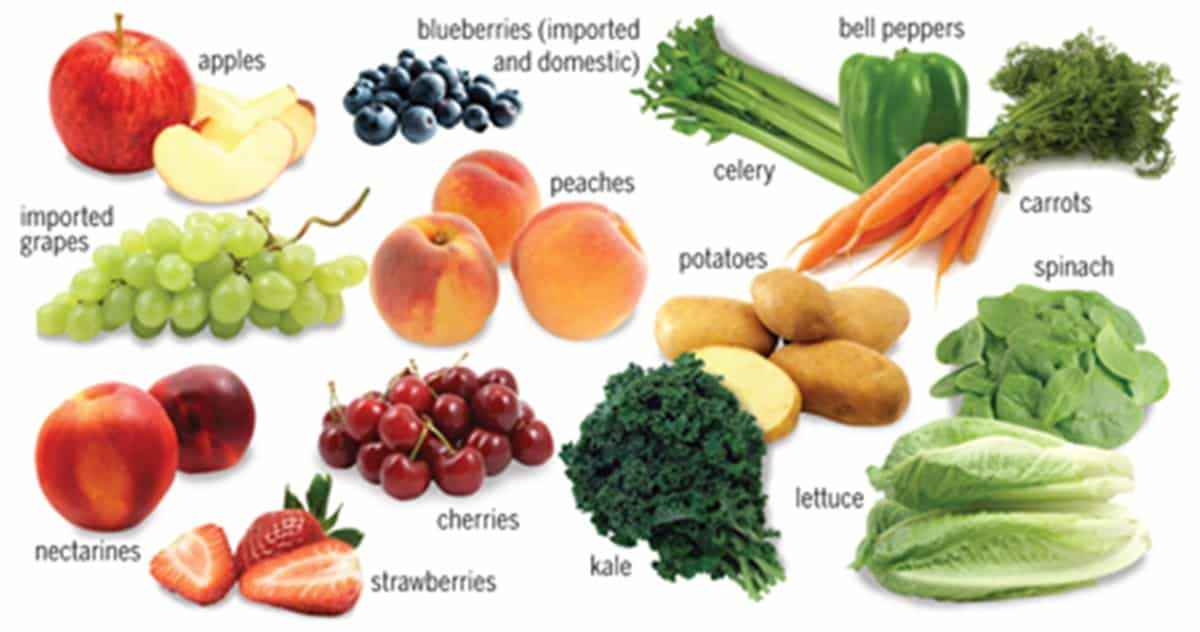 Fruits and Vegetables Vocabulary in English 2