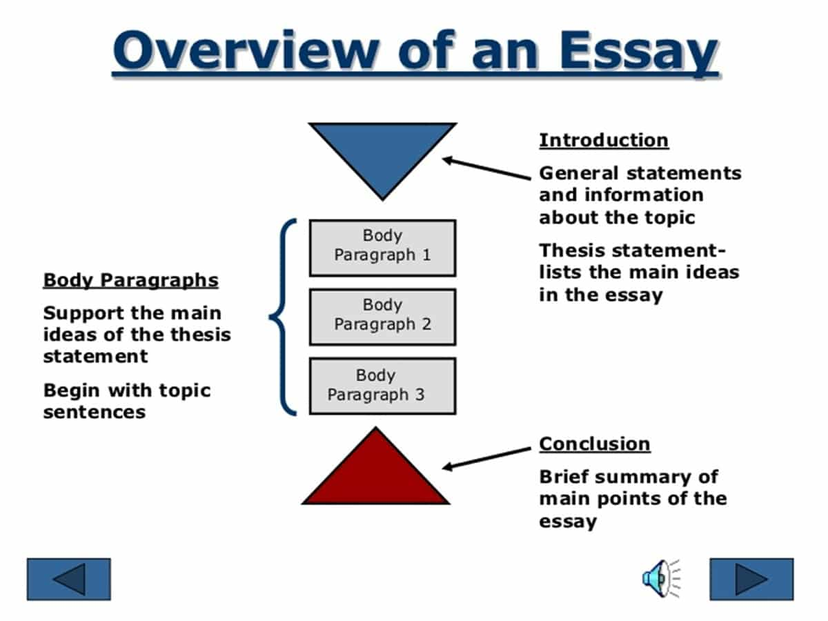 Step-By-Step Guide to Essay Writing