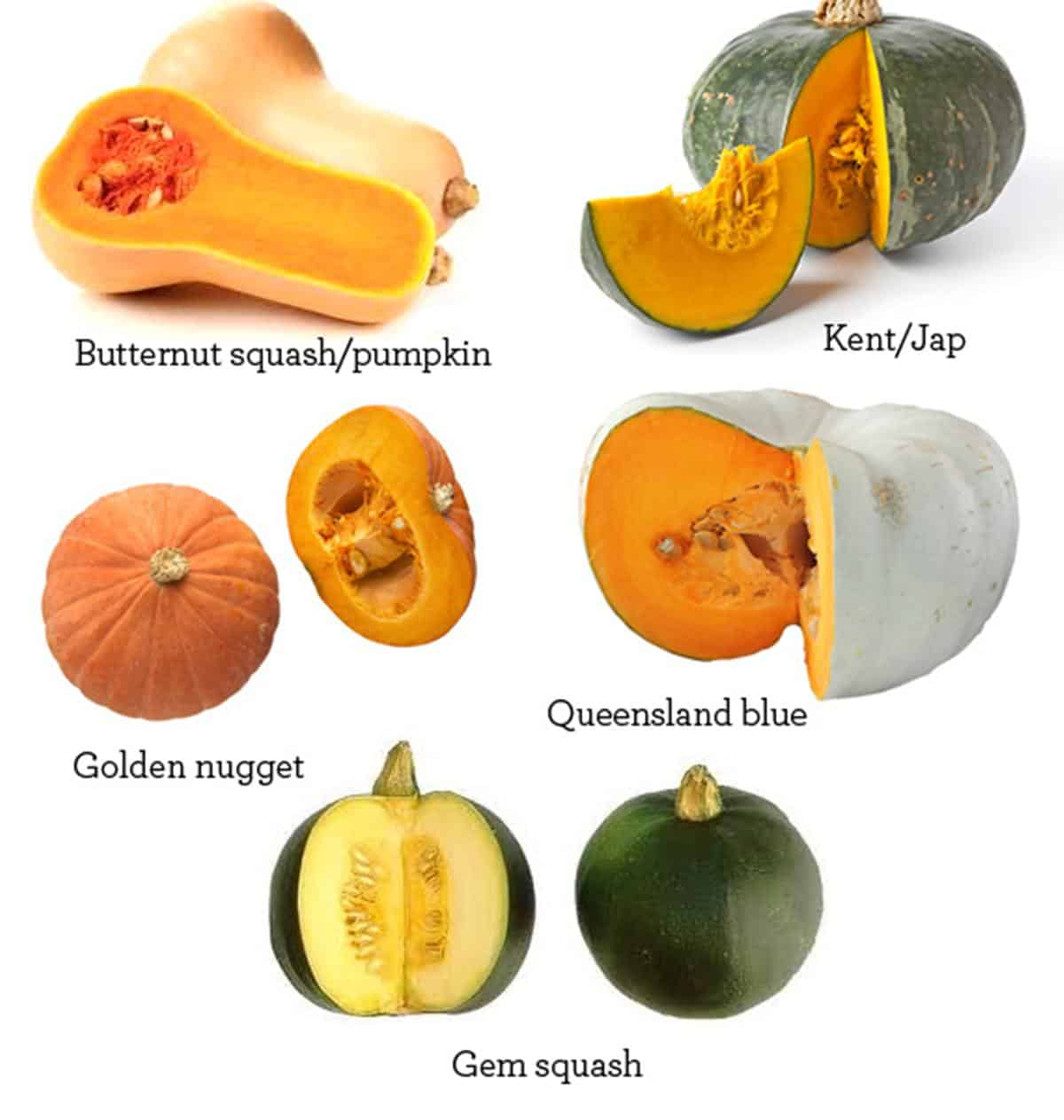 Fruits and Vegetables Vocabulary in English 9