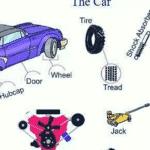 Modal Verb in English Grammar 3