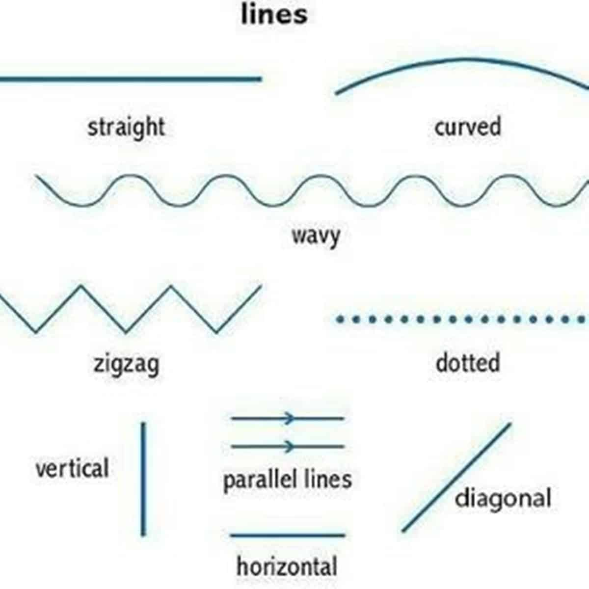 English Vocabulary: Lines and Angles