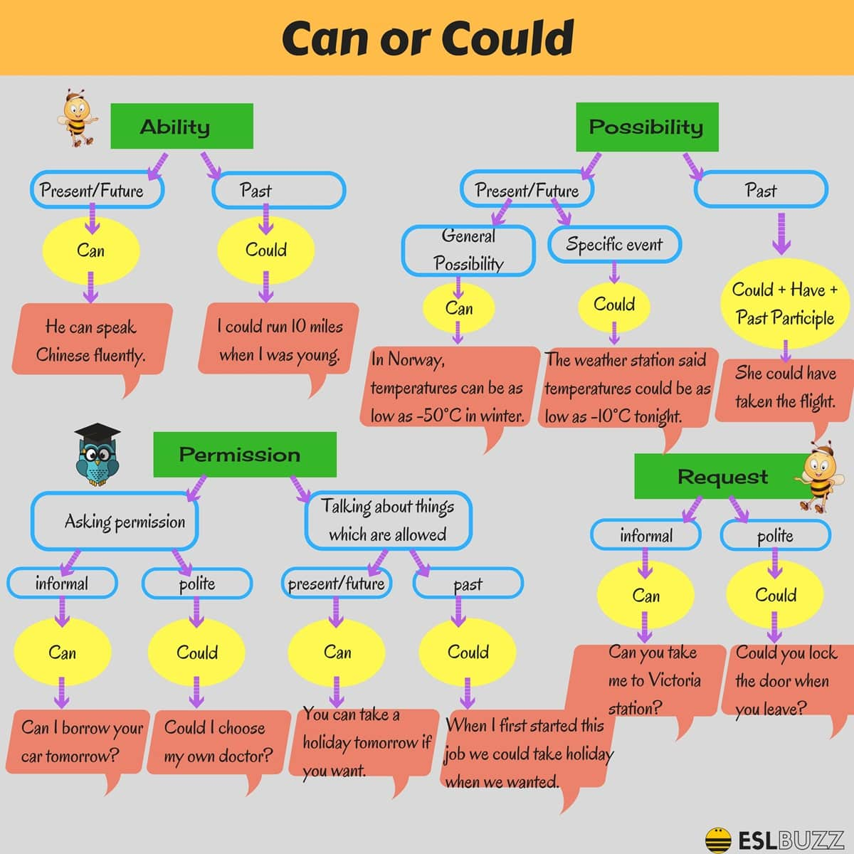Differences between Can and Could