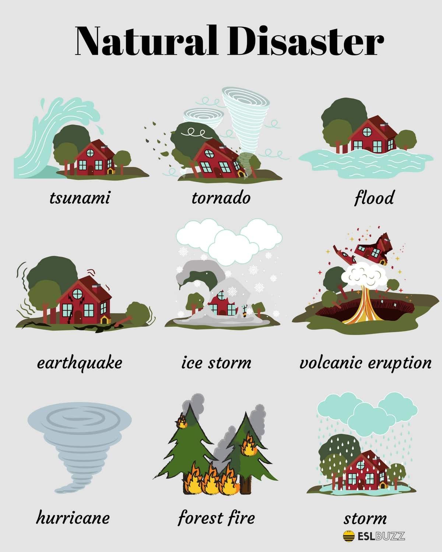 English Vocabulary: The Natural World 16