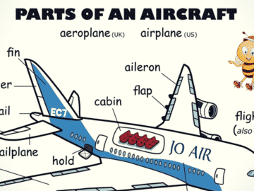 Parts of an Aircraft Vocabulary in English 19