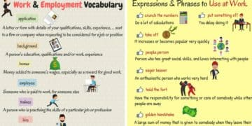 Useful English Words and Expressions about Work and Employment 2