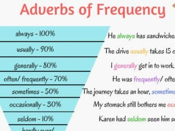 English Grammar: Adverbs of Frequency 14