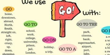 30+ Common Collocations with GO 20