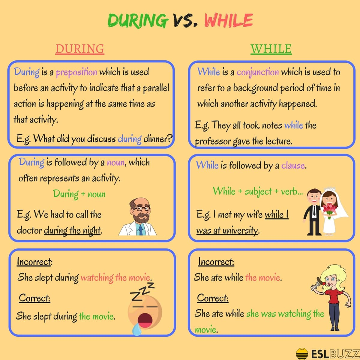 Difference Between During and While
