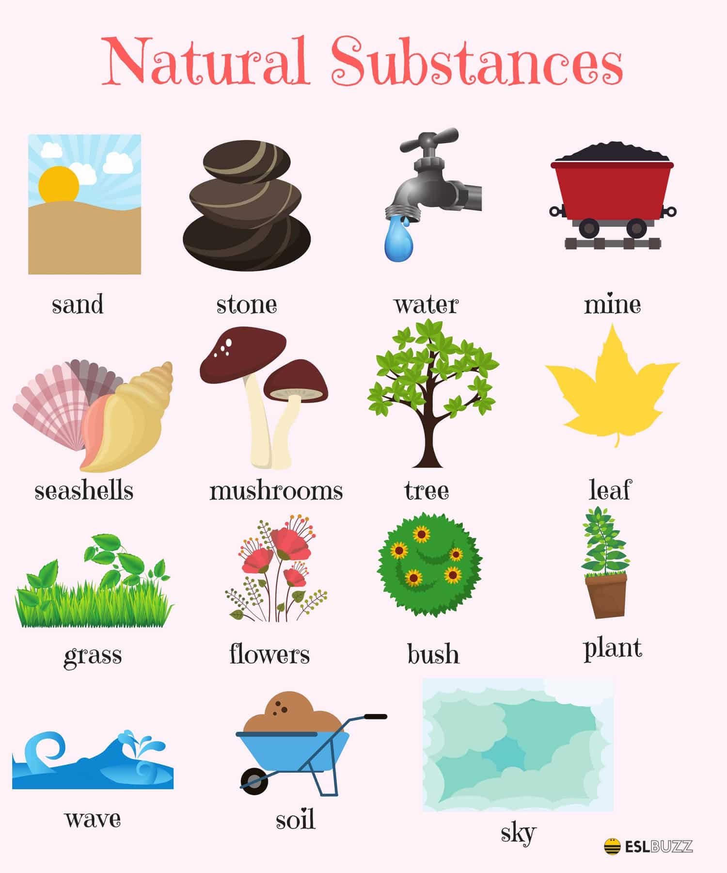 English Vocabulary: The Natural World 1