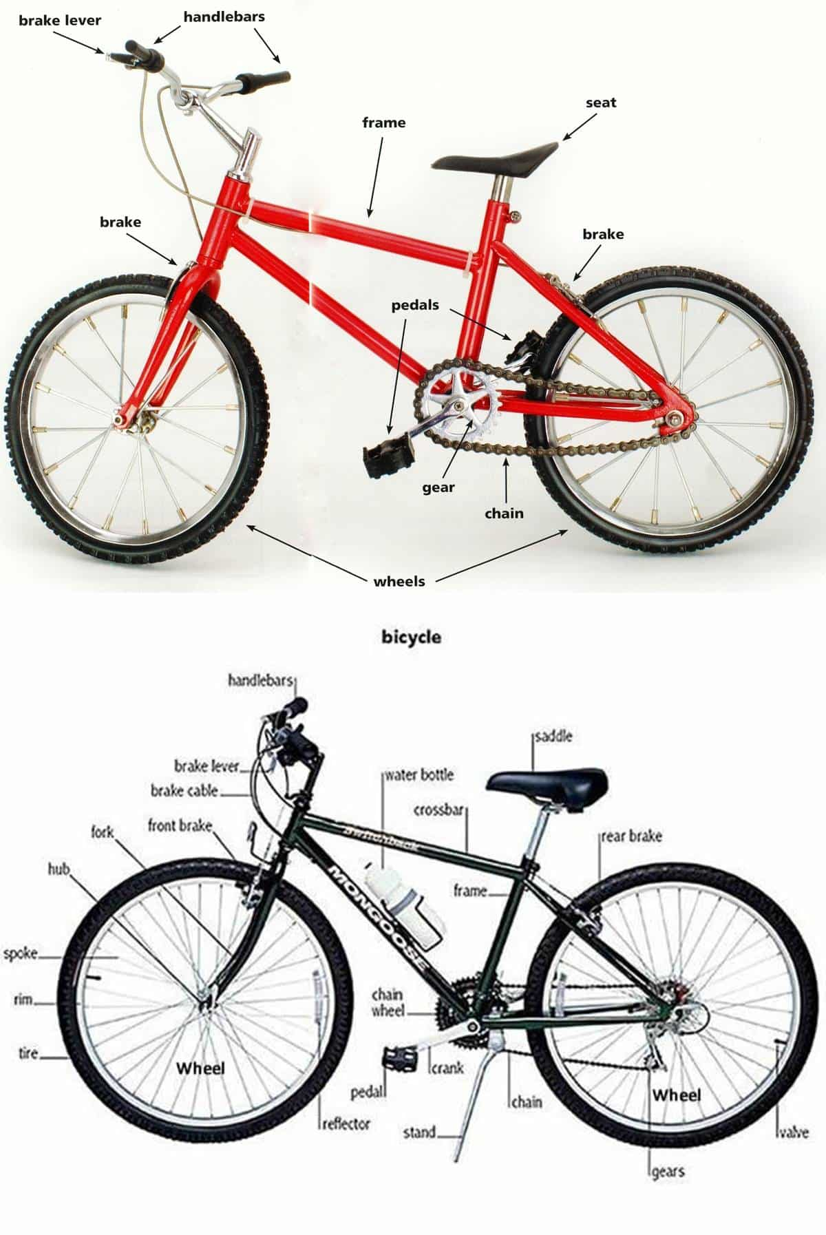 Parts of a Bicycle & Their Functions