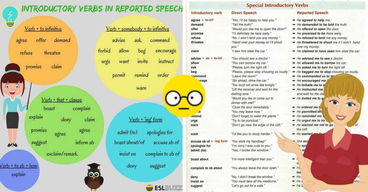 Reported Speech: Introductory Verbs in English 7