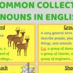 Stationery and Office Supplies Vocabulary in English 2
