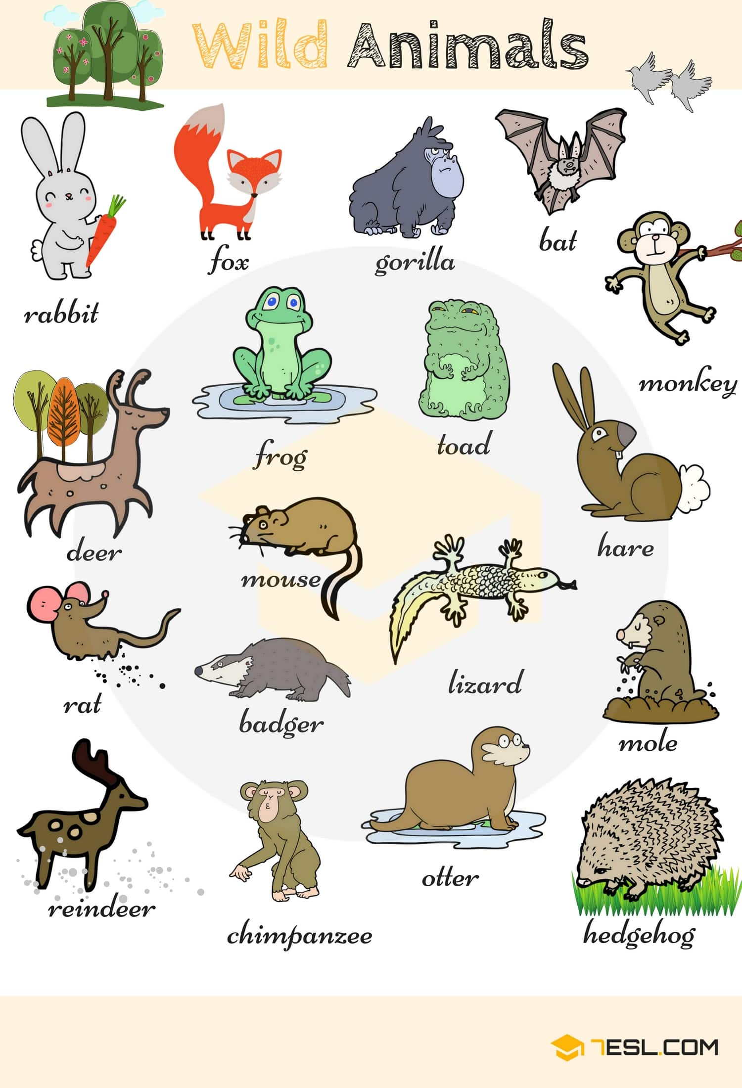 Wild Animal Vocabulary in English 1