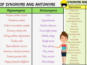 List of Synonyms and Antonyms in English You Should Know 20