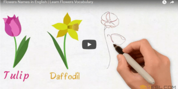 [Video] Flowers Vocabulary 8
