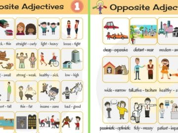 List of Opposite Adjectives in English 15