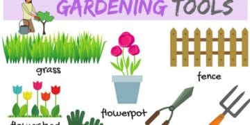 Learn Gardening Tools Vocabulary in English 13